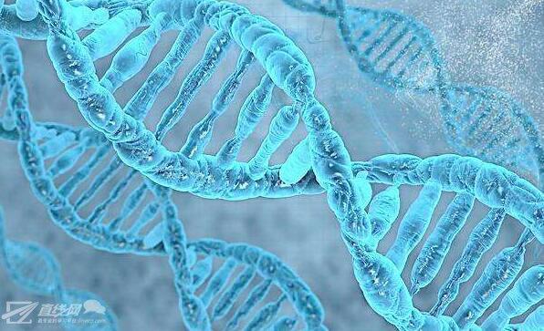 HOUDINI16制作DNA效果