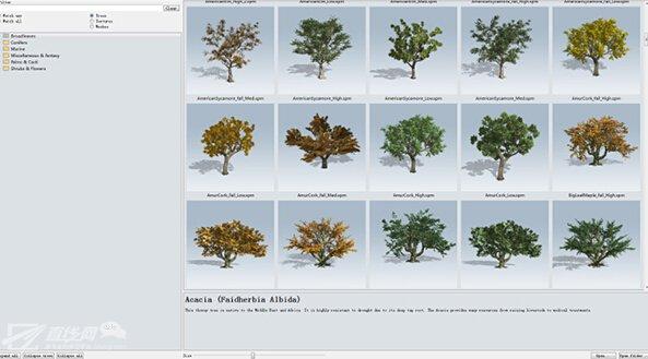 使用speedtree制作树生长动画