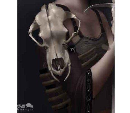 肩膀结构图 骨骼