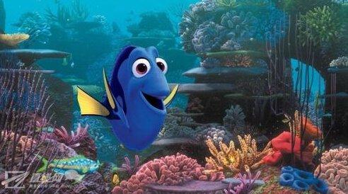 壁纸 动物 海底 海底世界 海洋馆 水族馆 鱼 鱼类 492_274