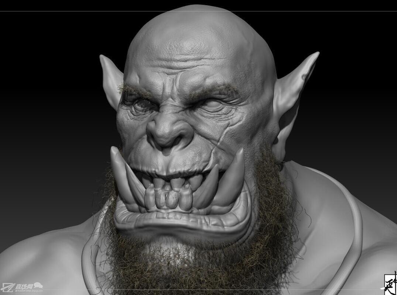 牙齿解剖形态雕刻