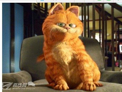 《加菲猫》时隔10年再度翻拍电影 真人、动画混合