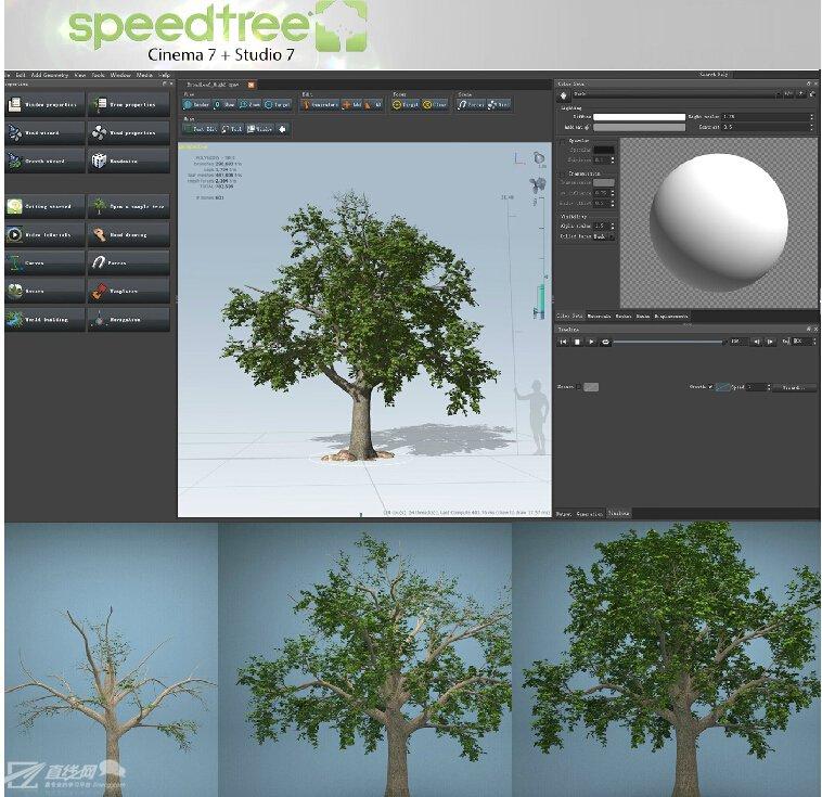 speedtree生长动画教程