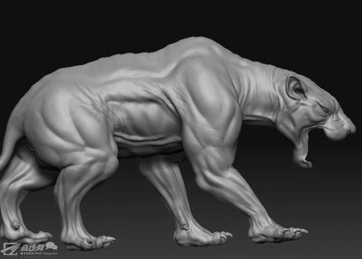 maya卡通动物建模
