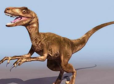(恐龙ppt图2) 恐龙的介绍问:快!防抓取,学路网提供内容.