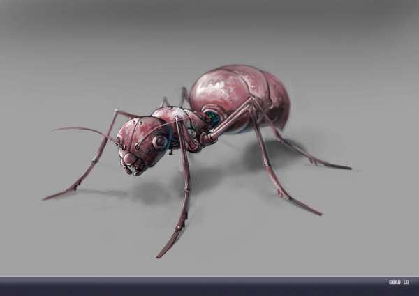 动物大世界蚂蚁