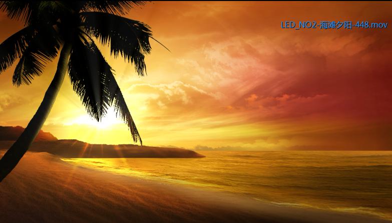 夕阳海滩椰树风光高清动态背景视频素材