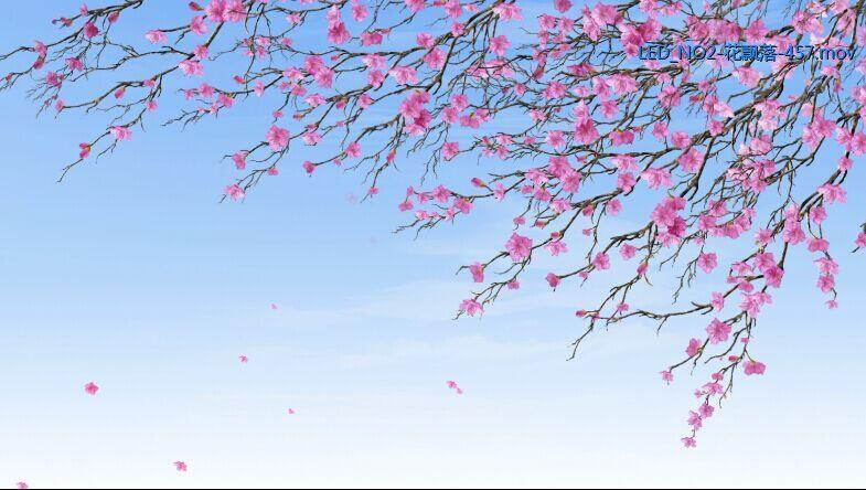 花瓣飘落的形状简笔画内容花瓣飘落的形状简笔画