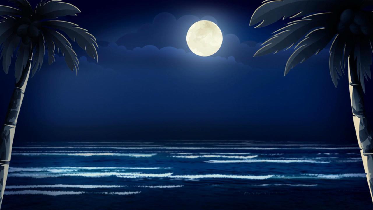 月亮椰树海边高清背景视频素材