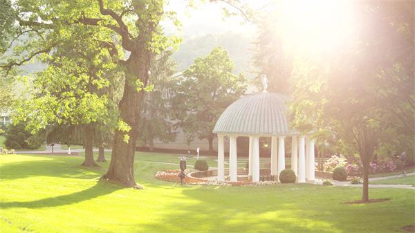 唯美阳光照射绿化公园草地苍梧大树庭院惬意生活节奏高清视频拍摄