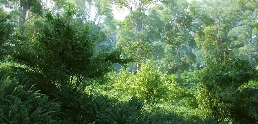 3dsmax森林场景素材