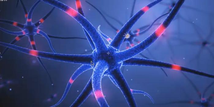 c4d与ae脑细胞神经特效动画中文教程--chen视觉课