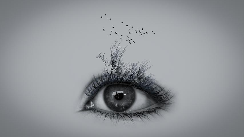 ps创意眼睛合成