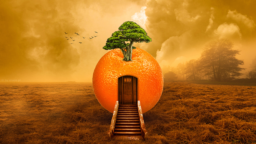 ps橘子小屋创意合成