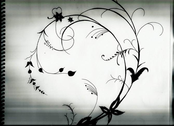 """转载:手绘黑白画""""花""""还是爱花"""