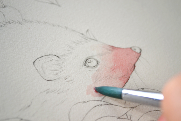 初画水彩没几张时做的一个教程。画的不好,有些死板。还有些小心翼翼。 不管正面或者反面希望对喜欢水彩手绘的同学有那么一点点的帮助。好的请吸收。不好的看过就忘了吧。 工具:温莎牛顿歌文12色固彩。获多福300g细纹水彩纸。欧斯丹2、6、8号尼龙水彩笔。 效果不错,与大家分享 共同学习,大家一起进步。