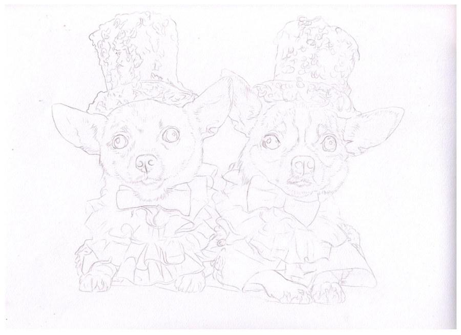 色铅笔的宠物萌绘封面作画过程