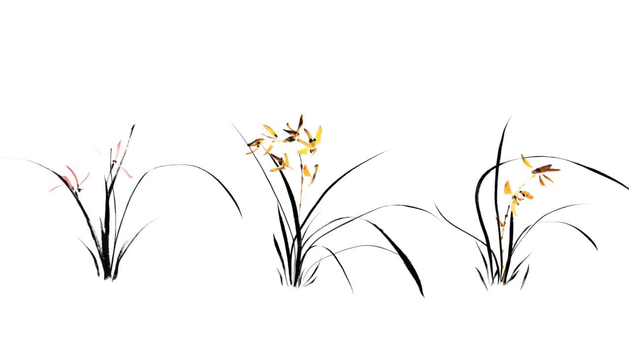 兰花立体矢量图